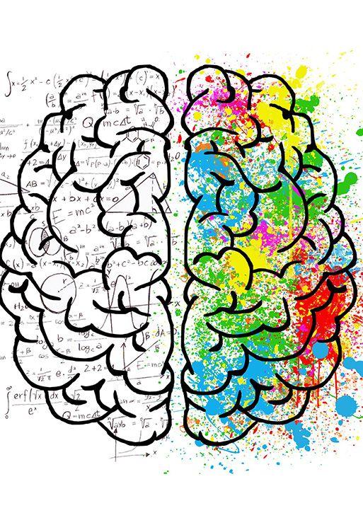 cerebro en varios colores recibiendo estimulo